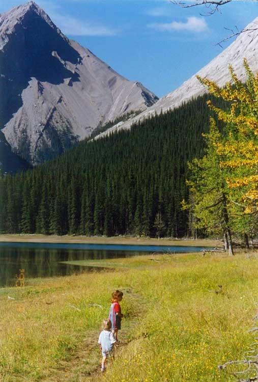 Alpine Village Jasper Cabin Accommodations In National Park Alberta Canada Honeymoon Pinterest And