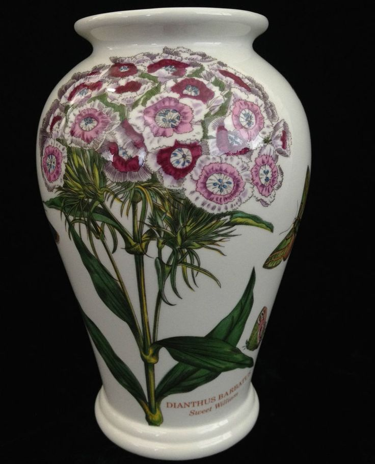 1000 Images About Portmeirion Pottery On Pinterest