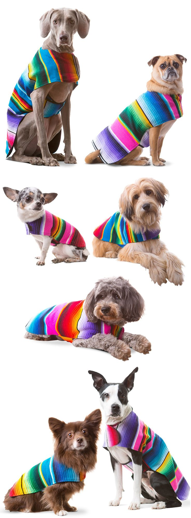 617 best dog coats images on Pinterest | Dog clothing, Dog sweater ...