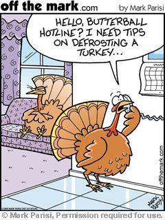 butterball turkey hotline call defrost turkey 2004-11-22