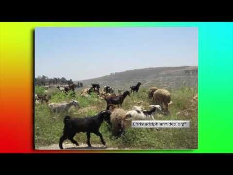 Israel: 'Nazareth' - In the Steps of The Master Tour of the Middle East ...
