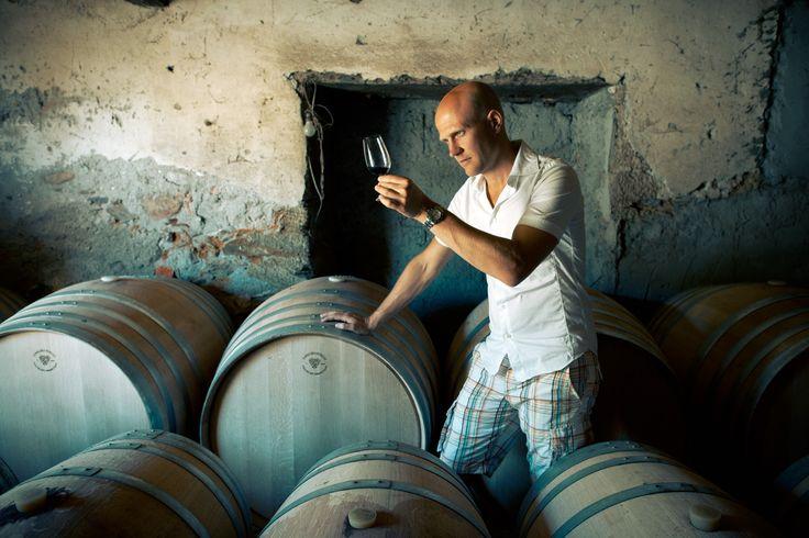 Sebastian Bredal, Winery Agent - By Arild Danielsen