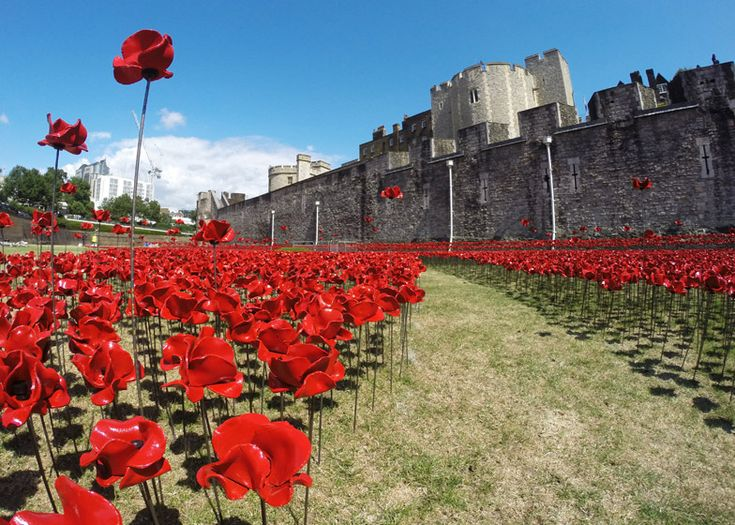 888,246 ceramic poppies have been planted around the Tower of London to commemorate the centenary (100 years) of World W1.