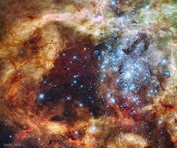 Звездное скопление R136  / Популярная астрономия