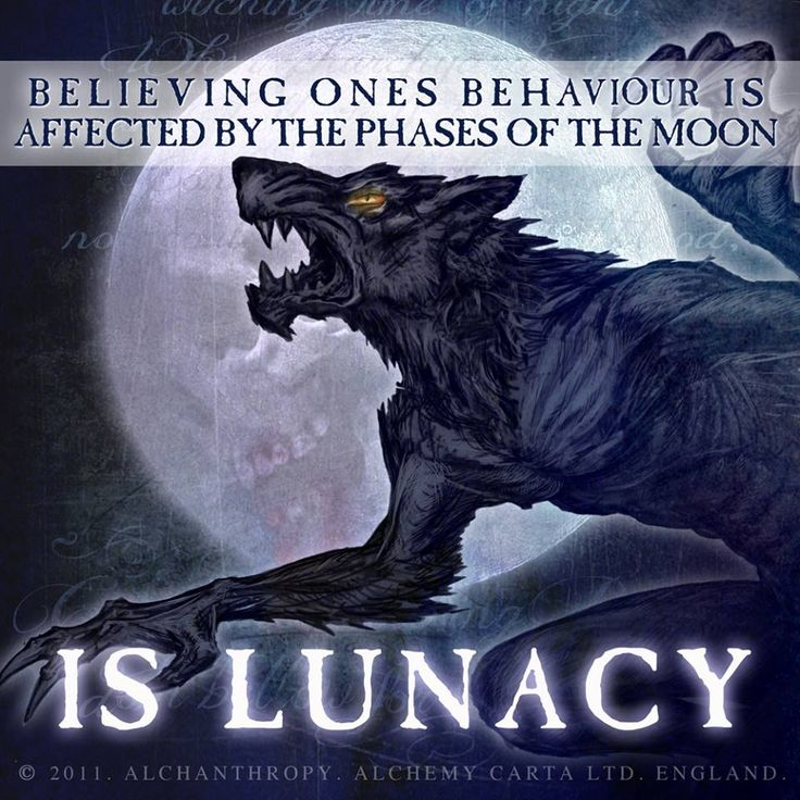 Image result for full moon mad