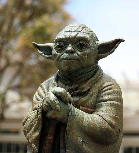 Trial (Error)  Yoda said there is no try I struggled as I tried to understand this (no) while I understood this (no)  whilst I didn't understand it  I gave it another try or  did I give it another do or  maybe another don't  I gave up in the end There is no Yoda I said just me