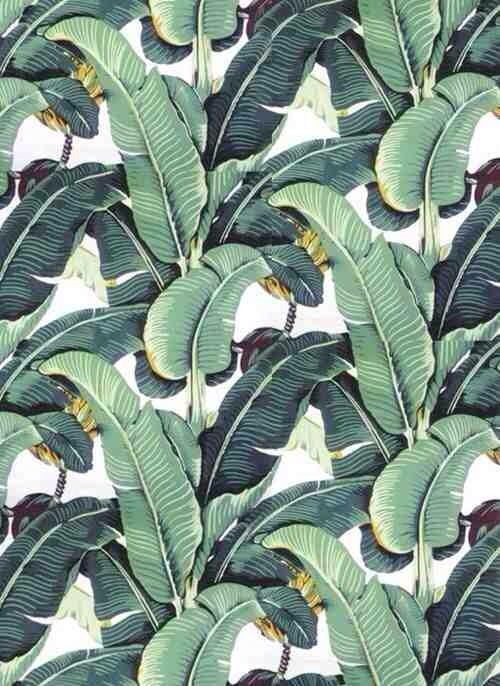 Best Blanche Devereaux S Bedroom Wallpaper Banana Plant 400 x 300