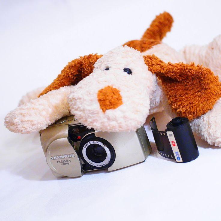Благодарность за дар «Пленочный фотоаппарат»