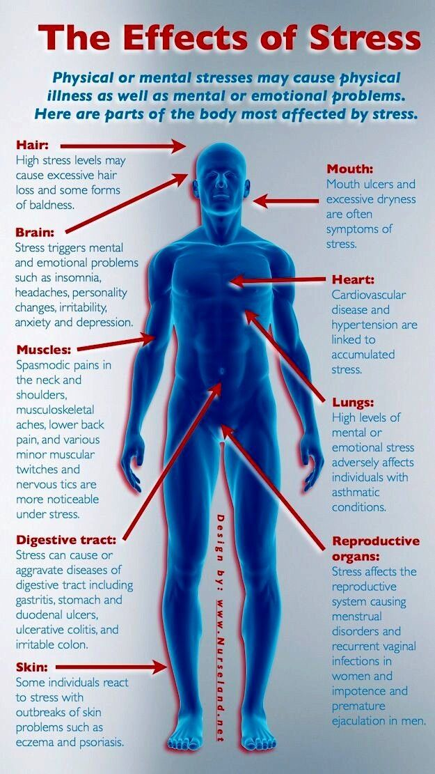 Image result for the effects of stress