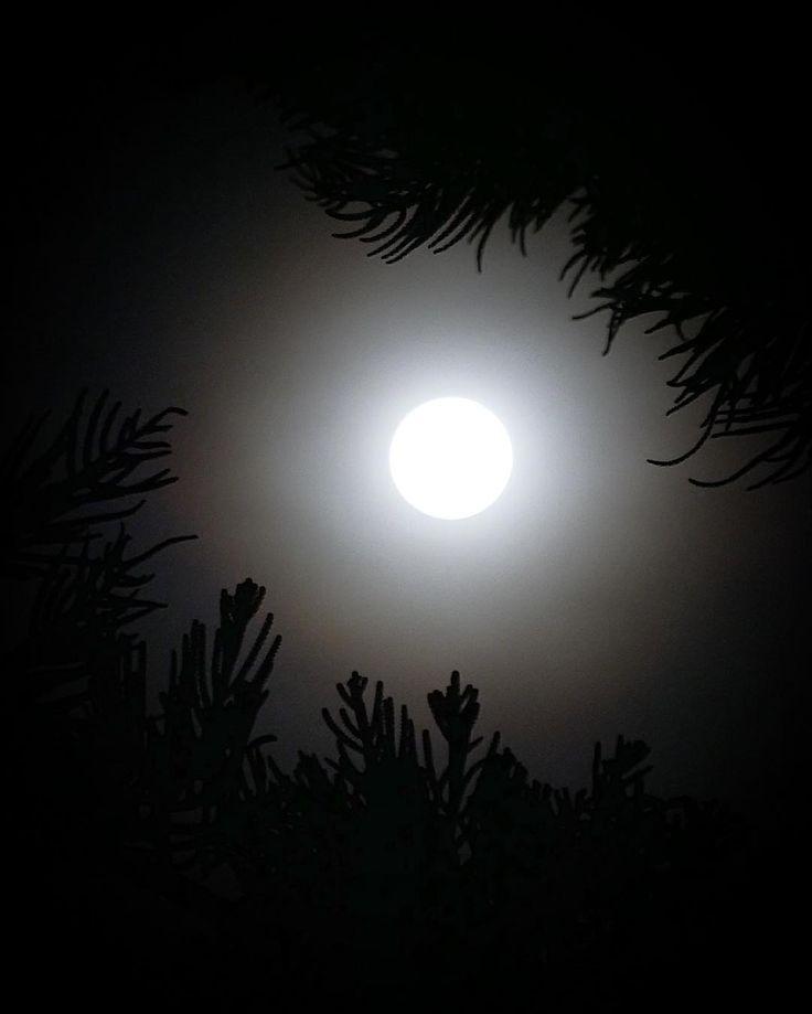 Super moon #lumix #gx85 #libertytodiscover #microfourthirds