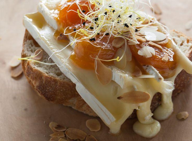 Ciabatta met warme brie en abrikozen - Brood.net