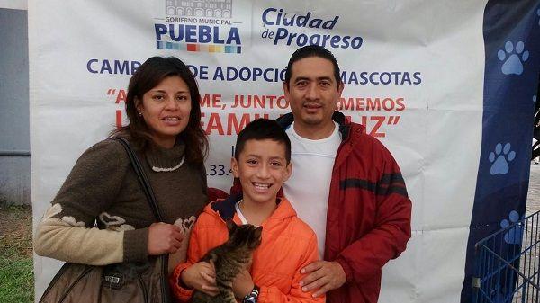 Ayuntamiento de Puebla impulsa adopción de mascotas