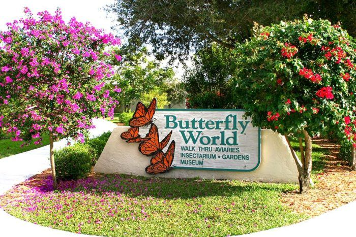 Florida is famous for some of the world's best beaches and biggest theme parks, but there's another very special attraction you probably didn't know about. Florida is home to the largest butterfly park in the world.