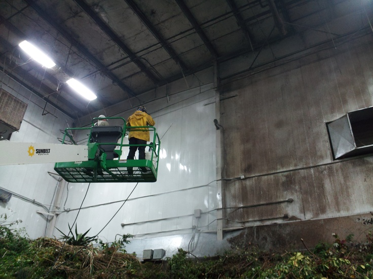 We washed mold and grime from the interior walls of the Solid Waste Transfer Station in Mountlake Terrace.
