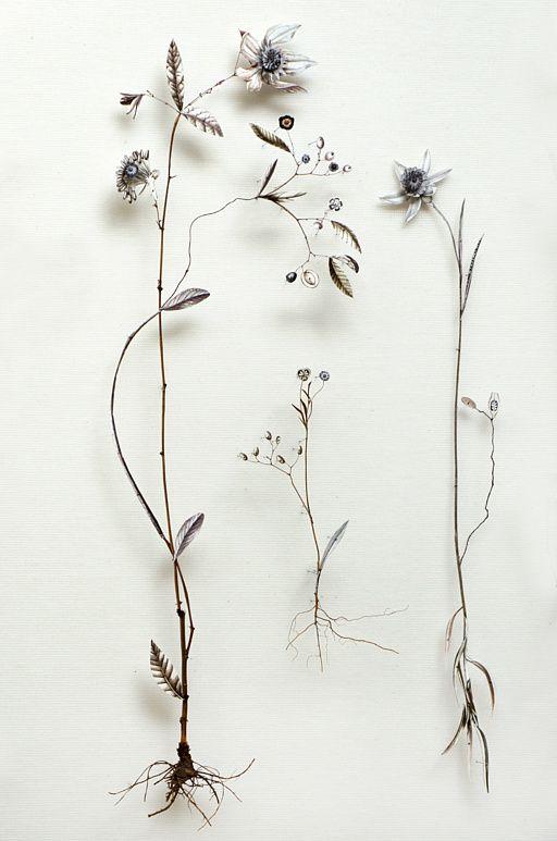 Anne Ten Donkelaar; Flower constructions