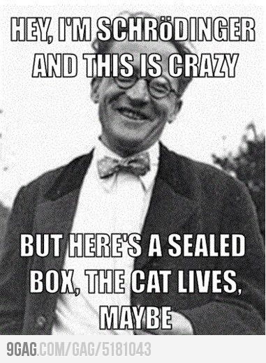 best one yet: Laughing, Nerd, Physics, Big Bangs Theory, Even, Humor, Funnies, Schrode Cats, Science