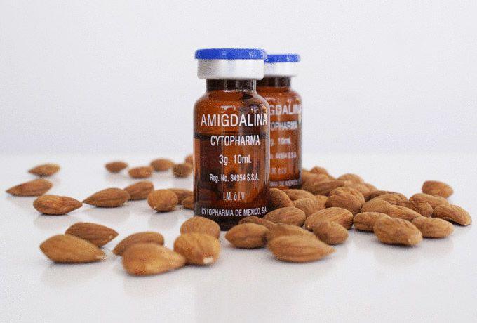 Витамин В17 стал предметом острых споров и открытой войны еще 20 лет назад, когда некоторые из ведущих ученых мира объявили, что при его употреблении человек на 100 процентов гарантирован от процесса развития рака и в большинстве случаев витамин убивает уже существующий рак.