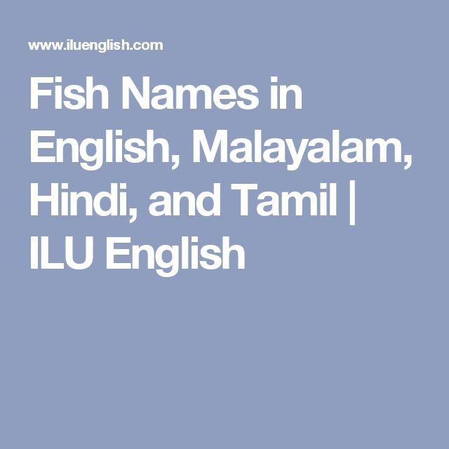 Fish Names in English, Malayalam, Hindi, and Tamil | ILU English