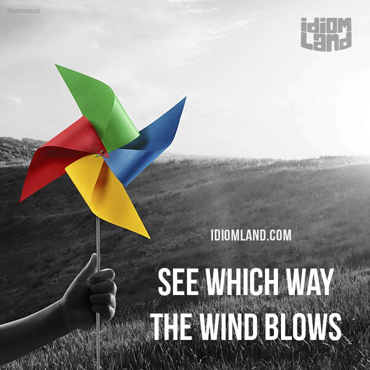 """See which way the wind blows"" means ""to know what is likely to happen in a particular situation"".  Example: We should talk to him and see which way the wind blows before we make any decisions.  #idiom #idioms #saying #sayings #phrase #phrases #expression #expressions #english #englishlanguage #learnenglish #studyenglish #language #vocabulary #dictionary #grammar #efl #esl #tesl #tefl #toefl #ielts #toeic #englishlearning #vocab #wordoftheday #phraseoftheday"