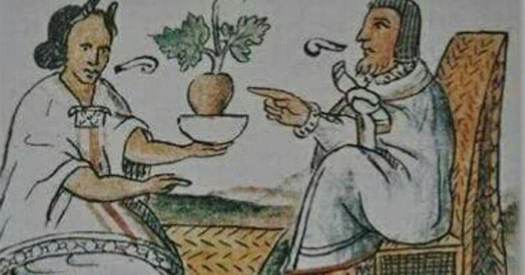 Entre otras cosas, es sorprendente la gran sabiduria en botanica de las culturas prehispanicas no solo la azteca, Mexico posee una gran riqueza botanica, tan solo es nopal es puro oro verde. El tratamiento de las enfermedades por parte de los Aztecas era parte consustancial de la atribucion de estas a los hombres que componían aquella etnia. Los Aztecas daban a las enfermedades un origen mágico y religioso que se venia a identificar como la introducción de un cuerpo extraño en el enfermo o…