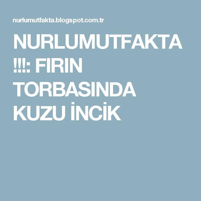 NURLUMUTFAKTA !!!: FIRIN TORBASINDA KUZU İNCİK
