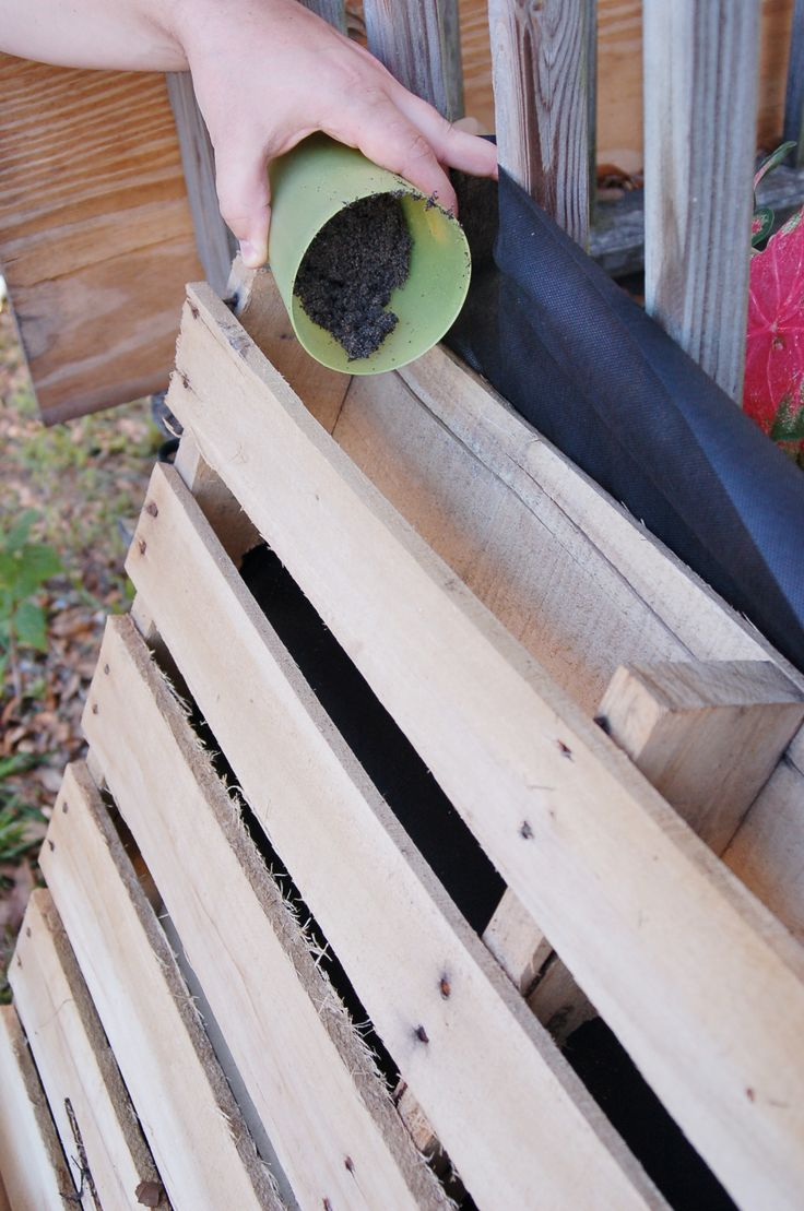 Plant a Garden by recycling wood pallet