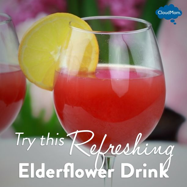 Try This Refreshing Elderflower Drink Recipe! | CloudMom