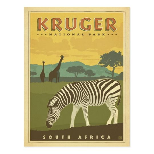 Kruger National Park, South Africa | Zebras & Gira Postcard