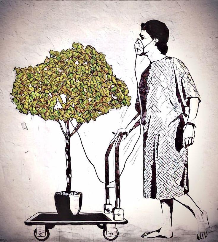 La contaminación ambiental es una enfermedad incurable. Solo puede ser prevenida. Barry Commoner.