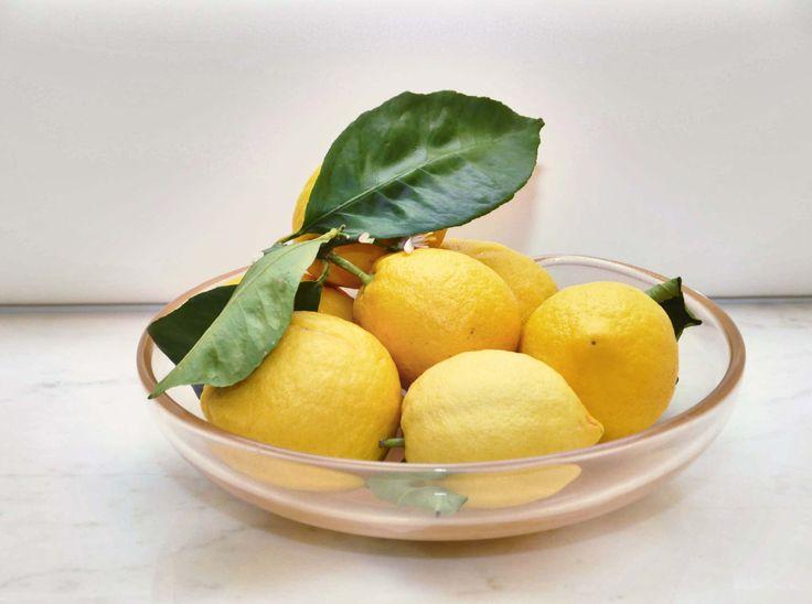 The tasty and genuine lemons from  limonaia garden at Villa Feltrinelli. #garda #lake #villafeltrinelli #grandhotel #lemon