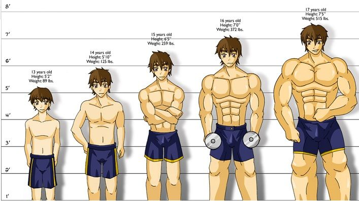 How Long Does It Take To Build Muscle Here S The Truth Build Muscle Muscle Building Tips Muscle Building Workouts