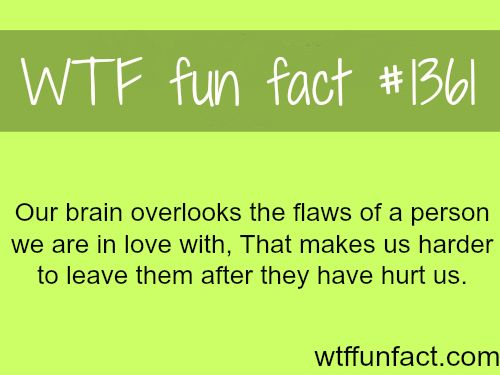 how our brain works?  - love / relationships MORE OF WTF FUN facts  are coming HERE relationships and fun facts