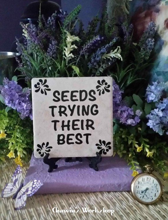 Seeds Doing Their Best Funny Garden Sign Father S Day Gift