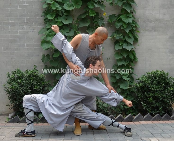 Meihua Quan static position number 5:  Bai Shi. Practice Meihua Quan under the guidance of Shifu Shi Yan Jun (Du Weijun), 17th Disciple of Meihua Quan. He is the Founder & President of International Meihua Quan Federation, Vice-President of Chinese Meihua Quan Association and Xingtai University Professor for Meihua Quan.
