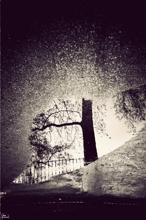 Reflexo em poças d'água. by Gavin Hammond