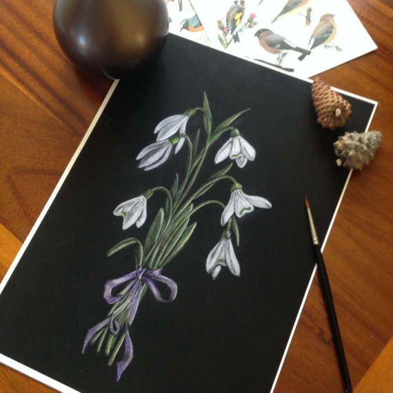 Fine art giclee print of my original snowdrops illustration  Original artwork drawn myself using coloured pencil on black card Inspired by botanical, vintage style illustraion and the beauty of early spring snowdrops  Archival quality print on 300gsm high quality paper  High standard of print to ensure colours will last This is a print and comes unframed Size A4 (297mm x 210mm) Ships internationally, protected in a card backed envelope with tracked delivery