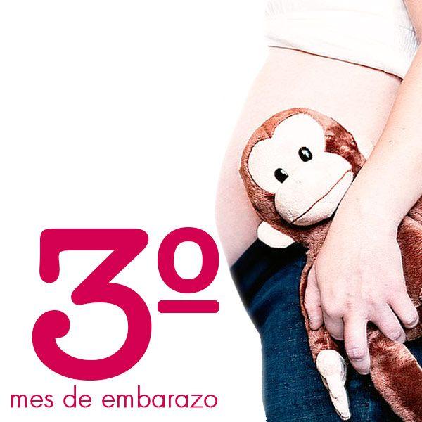Conoce la Wombox del 3º Mes del Embarazo, una cajita de felicidad para vivir la maternidad de una manera diferente o el regalo perfecto para sorprender a esas personas que tanto quieres. Conoce sus beneficios en www.wombox.co #embarazo #sorpresas #regalos