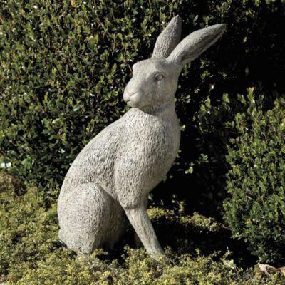 Attractive English Garden Hare