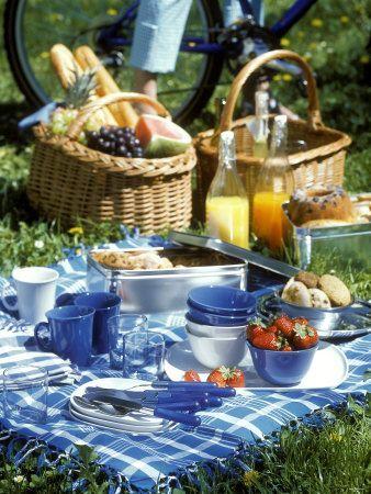 """海外がお手本!イマドキのピクニックは""""おしゃれ""""なんです-STYLE HAUS(スタイルハウス)"""