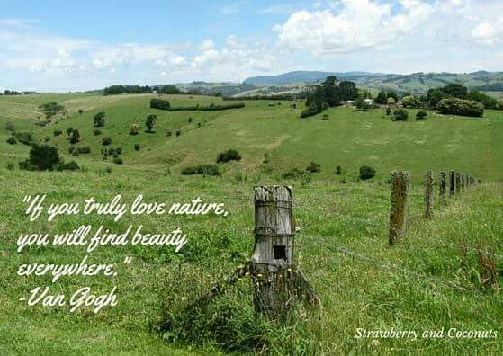 Find beauty everywhere. Follow me at facebook.com/bellefever.louise
