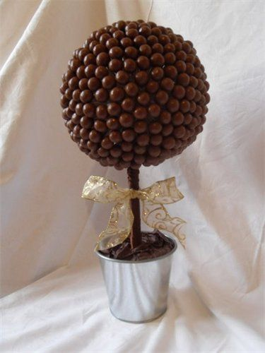 Malteser sweet tree