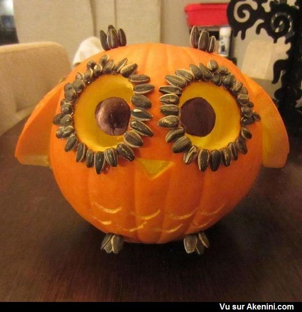 9 best pumpkin carving ideas images on Pinterest Carving pumpkins - easy halloween pumpkin ideas