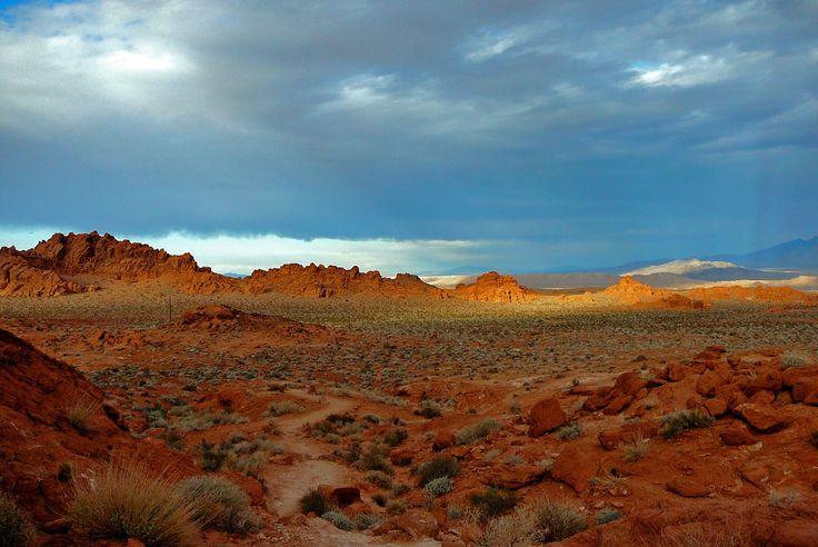 Désert du Nevada (2008)