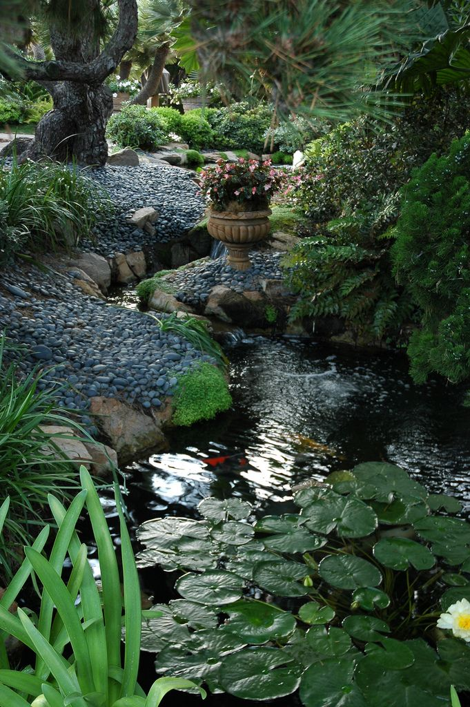 175 best ideas about sweet green on pinterest steven for Pond shade ideas