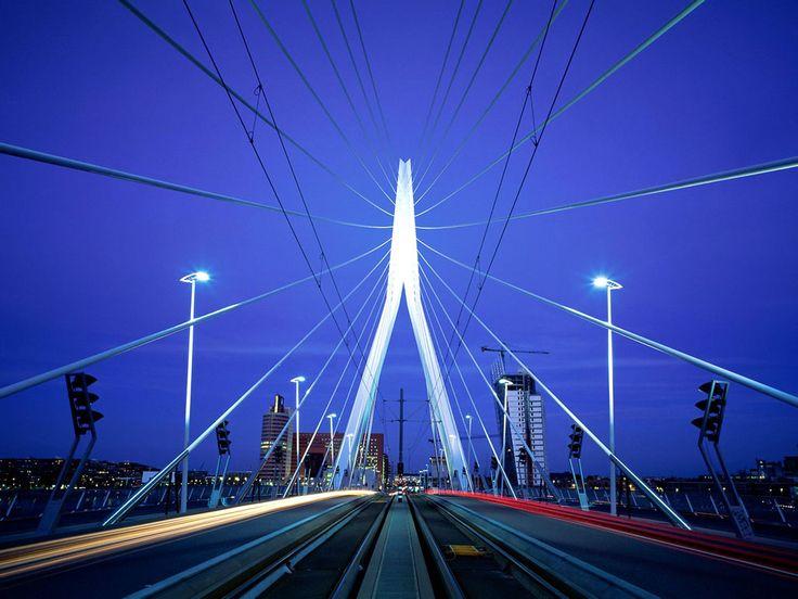 Erasmus Bridge, Rotterdam, Netherlands. #Rotterdam #Netherlands