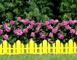 """Still Waters--Notes from a Virginia Shire: """"Fences and Flowers"""" (image is from 103fence.com)"""