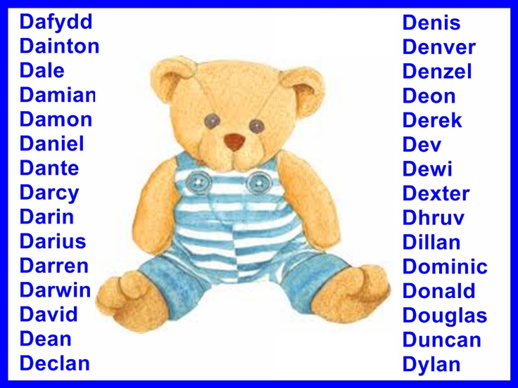 Girl Teddy Bear Dog Names