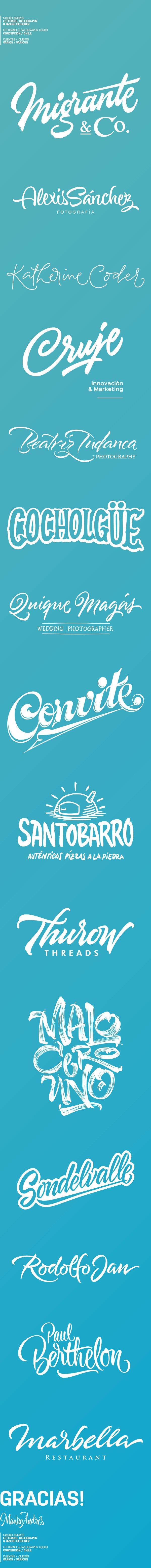 Lettering & Calligraphy Logos in Typography