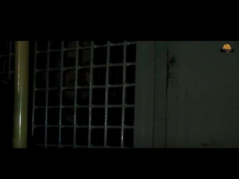 ☑ 3D-Лев Против 67 - Снова зло проиграло Льву .стереопара