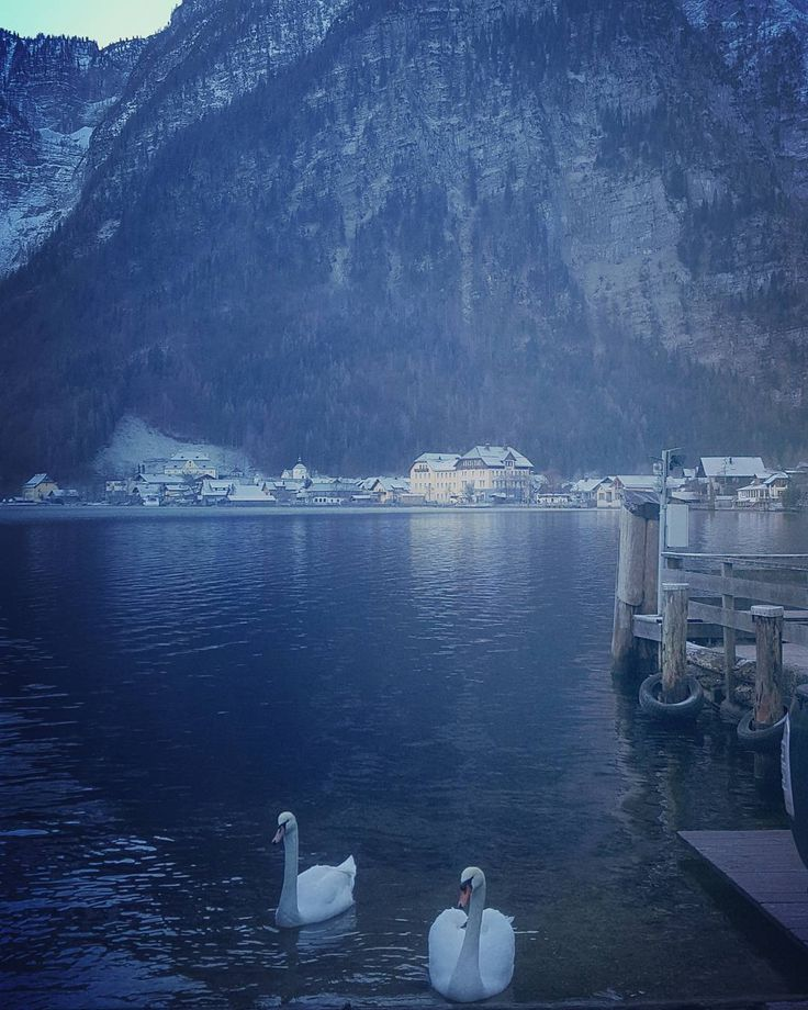 Peaceful place Hallstatt Austria I love this place so much #break #calm #peaceful #photography #hallstatt #austria